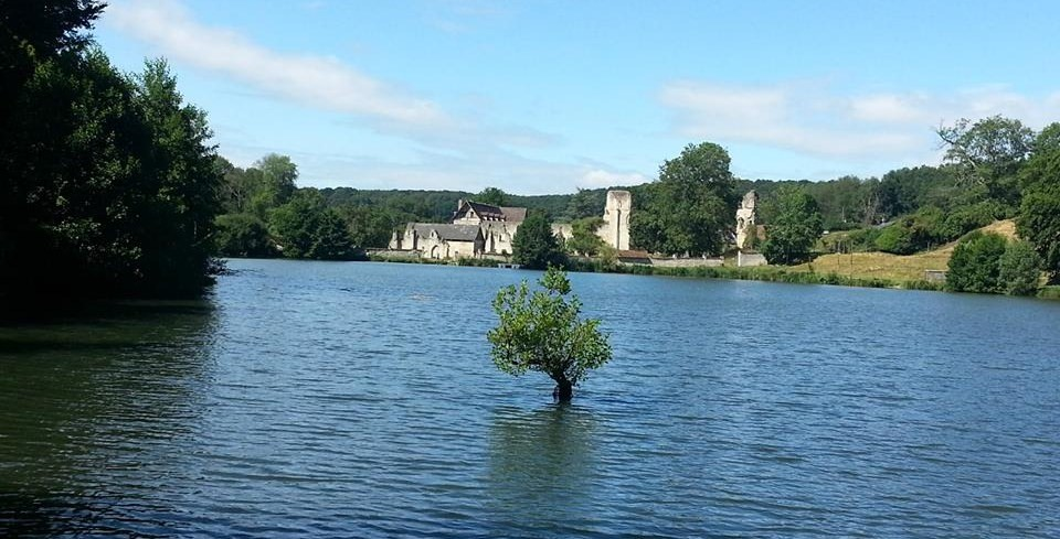 Mortemer Abbey pond